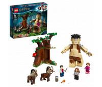 Конструктор LEGO Harry Potter Грохх и Долорес Амбридж 75967